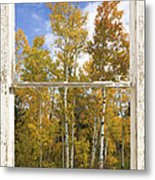 Colorado Autumn Aspens Picture Window View Metal Print