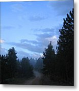 Colorado Pine Forest In Mist Metal Print by Ric Soulen