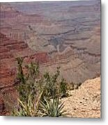 Colorado River Grand Canyon National Park Arizona Usa Metal Print