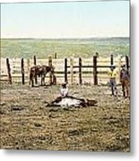 Colorado: Roping A Steer Metal Print