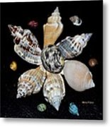 Colored Seashells Metal Print