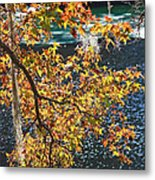 Colorful Fall Leaves Over Blue Water Metal Print