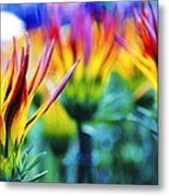 Colorful Flowers Together Metal Print