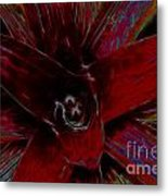 colorful Frond Metal Print