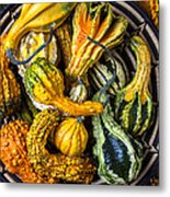 Colorful Gourds In Basket Metal Print