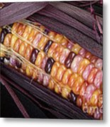 Colorful Indian Corn Metal Print