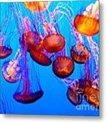 Colorful Jellies Metal Print