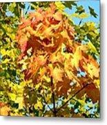 Colorful Leaf Cluster Metal Print