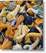 Colorful Mix Of Gords Metal Print