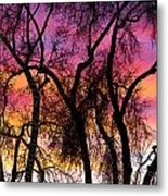 Colorful Silhouetted Trees 27 Metal Print