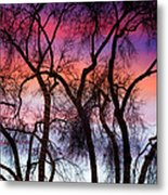 Colorful Silhouetted Trees 9 Metal Print
