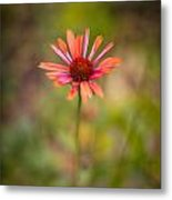 Colorful Stand Metal Print