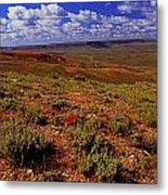 Colorful Valley From Fossil Lake Trailsil Bu Metal Print