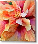 Coloring Book Hibiscus Metal Print
