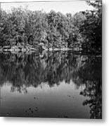 Colorless Reflection Metal Print
