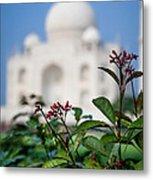 Colors Around The Taj Mahal Metal Print