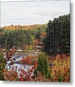 colors of fall in New England Metal Print