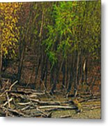 Columbia Bottoms Slough Metal Print