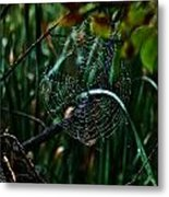 Come Into My Palor Metal Print