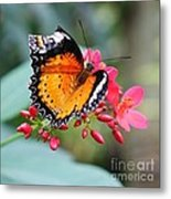 Common Lacewing Metal Print