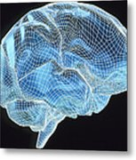 Computer Artwork Of A Wire-frame Model Of A Brain Metal Print