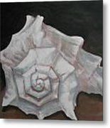 Conch Shell Metal Print