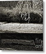 Concurrence Of Causes Metal Print