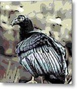 Condor Profile Metal Print