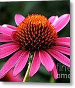 Cone Dome Metal Print