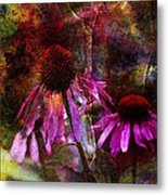 Cone Flower Beauties Metal Print by J Larry Walker