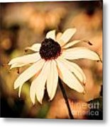 Cone Flower Grunge Metal Print