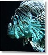 Cool Fish Metal Print