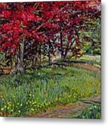 Copper Beeches New Timber Sussex Metal Print