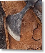 Cork Oak Quercus Suber Bark Metal Print