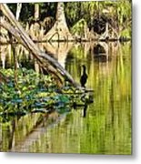 Cormorant On The River Metal Print