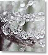 Corned Jewels Metal Print