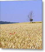 Cornfield With Poppies Metal Print