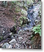 Corte Madera Creek On Mt Tamalpais Metal Print