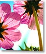 Cosmia Flower Twins Metal Print