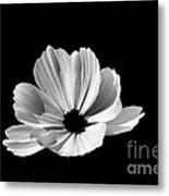 Cosmo Black And White Metal Print