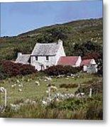 Cottage, Ireland Metal Print