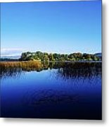 Cottage Island, Lough Gill, Co Sligo Metal Print