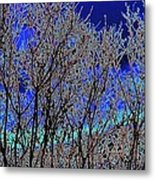 Cottonwood Line Up Metal Print