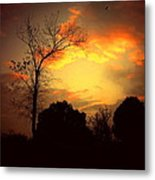 Cottonwood Sunset Metal Print