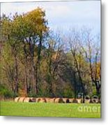 Country Bails Metal Print