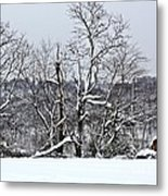 Country Christmas 5 Metal Print