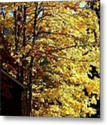 Country Color 22 Metal Print
