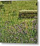 Country Gardens Metal Print