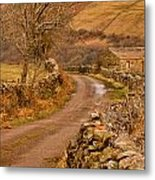 Country Lane Yorkshire Dales Metal Print