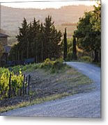 Country Road At Sunset Metal Print